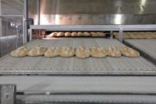 Professional ovens for bread